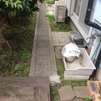 東京都昭島市 庭の草むしり、剪定、伐採、固まる土施工、外構 O様邸H様