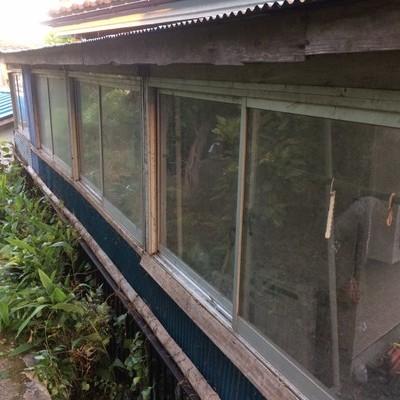 東京都あきる野市 蔦・草の除去と屋根上の落葉清掃 F様