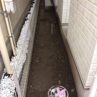 東京都日野市 防草シート施工、化粧砂利の施工 S様