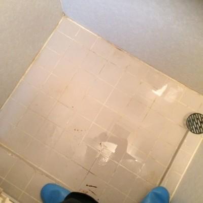 東京都墨田区 ゴキブリの駆除・浴室清掃 T様