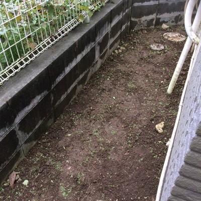 東京都あきる野市 お庭の草むしり M様