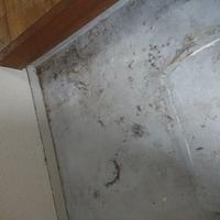 東京都青梅市 浴室掃除 O様