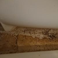 東京都福生市 浴室掃除 K様